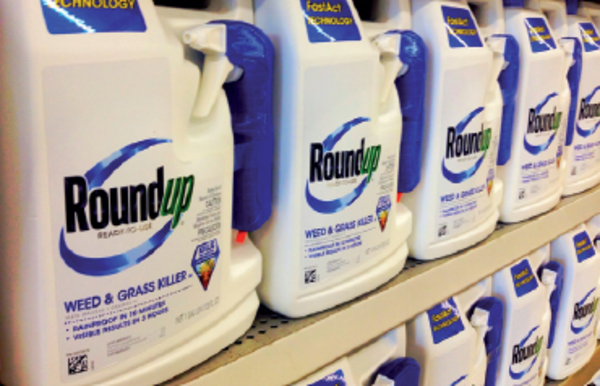 Glyphosate : Bayer vers un accord dans l'affaire du Roundup