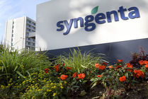 Protection des cultures : Syngenta inaugure une unité de production